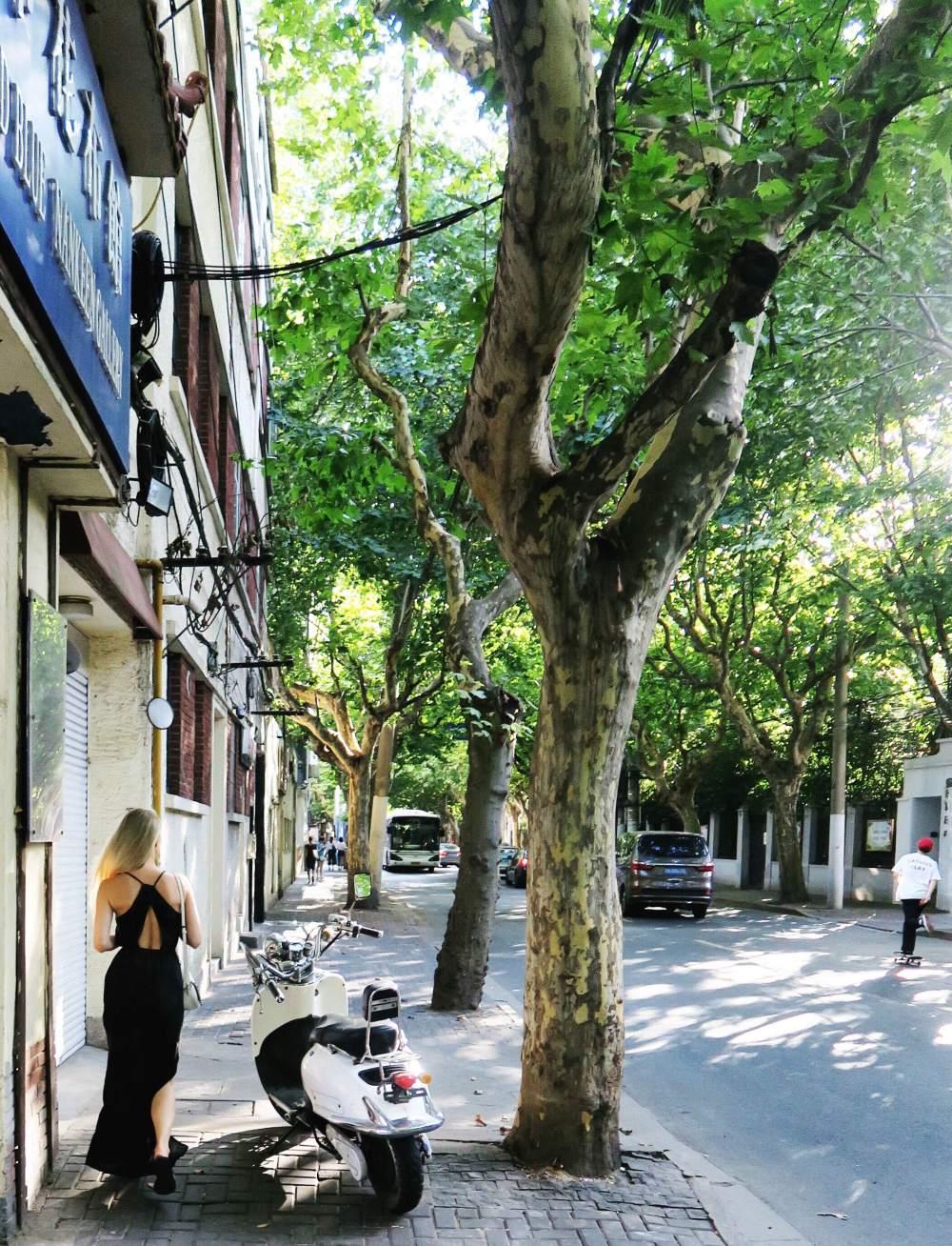 Shanghai Expat Blog